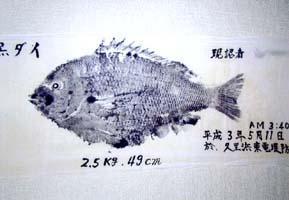 大漁の話(その1)
